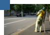 道路工事測量