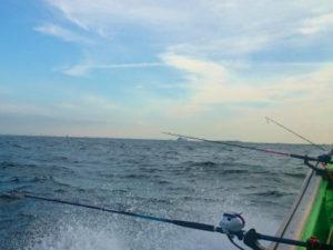 海に向かって並ぶ釣竿