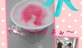 【熱中症対策】会社でカキ氷!!